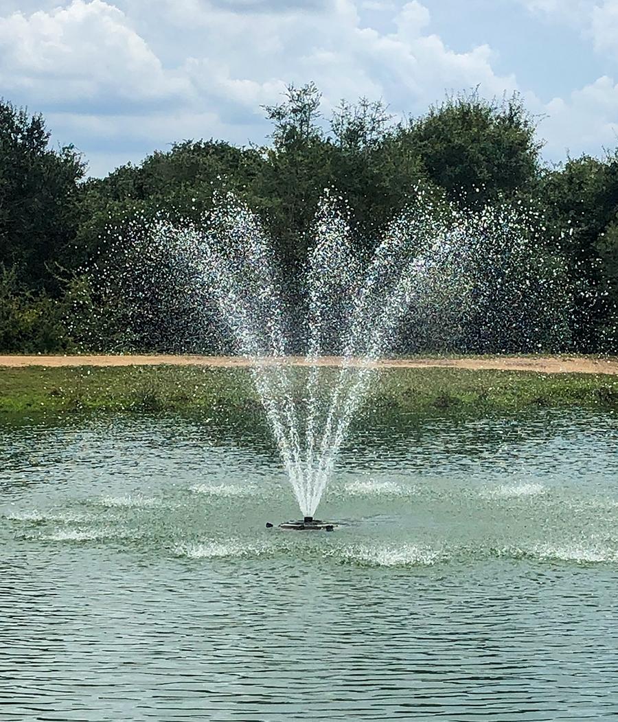 Kasco Fountain
